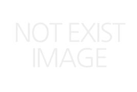 가마가츠 마스터모델2 치누 L-53(2)